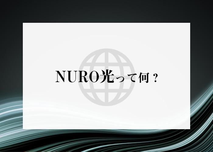マンション インターネット 導入 NURO光