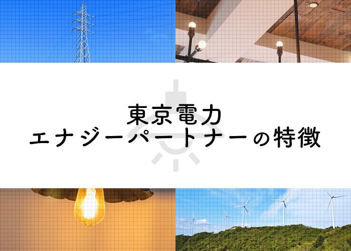 東京電力エナジーパートナー(東京電力EP)の特徴
